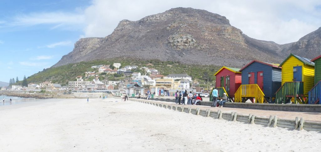 newsletter_muizenberg